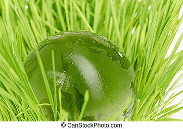 環境, 概念, 玻璃球体, 在, the, 草