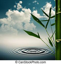 環境, 竹, 草, 背景, アジア人