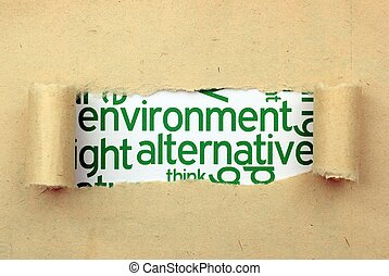 環境, 選択肢