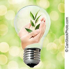環境, 電球, 味方