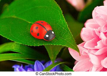 瓢蟲, 花, 玩具