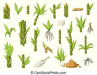 甘い, 砂糖, icon., イラスト, セット, leaf., アイコン, ベクトル, plantation., サトウキビ, バックグラウンド。, 漫画, sugar., 杖, 白