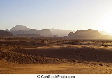 甘蔗酒,  -, 約旦, 干涸河道, 傍晚, 沙漠