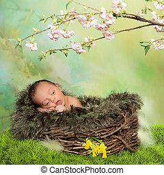 生まれたての赤ん坊, 春