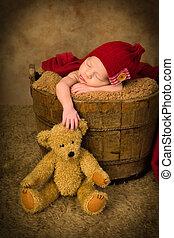 生まれたての赤ん坊, 熊, テディ