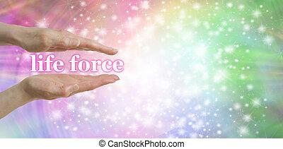 生命力, あなたの, 手
