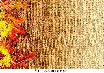 生地, 古い, 上に, 背景, 秋の群葉, 落ちている, 抽象的, ヘシアン