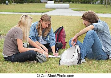 生徒, 公園, モデル