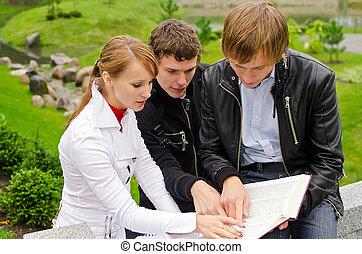 生徒, 勉強, グループ, 屋外で