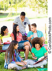 生徒, 勉強, 上に, 大学 キァンパス