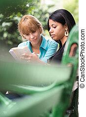 生徒, 勉強, 大学, 公園, 教科書