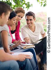 生徒, 大学, 公園, homeworks