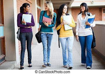 生徒, 講義, 歩くこと, 大学, ホール