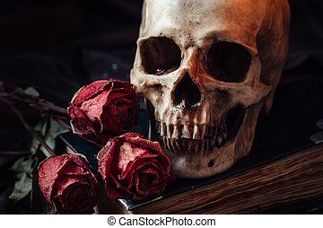 生活, まだ, 人間の頭骨