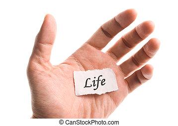 生活, 単語, 手