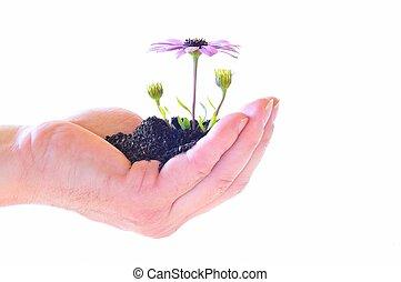 生活, 在, 你, 手。