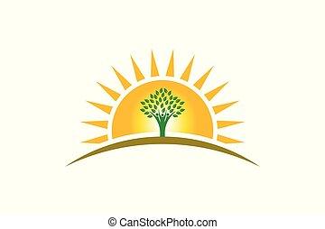 生活, 家族, 人々, 3人の人々, 日光, logo., 木, 強い