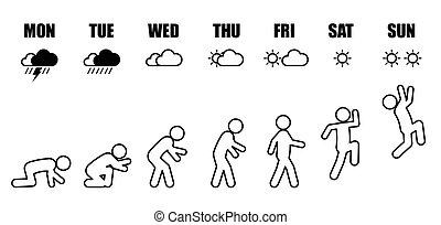 生活, 毎週, 進化, 仕事, くぼみ