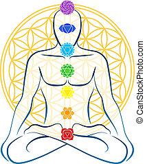 生活, 花, chakras, 人