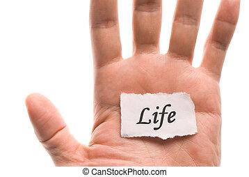 生活, 詞, 在, 手