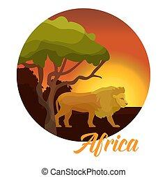 生活, badge., 動物, illustration., 自然, concept., ライオン, アフリカ, 活版印刷, ベクトル, 日没, アフリカ, baobab, 野生, 野生生物, 一周される