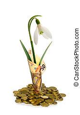 生長, 投資, 在, 歐元