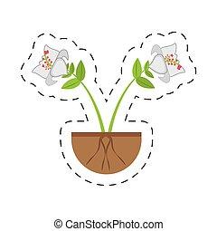 生長,  Daylily, 花, 分支