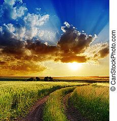 田園, 上に, 劇的, 日没, 道