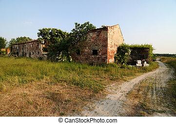 田園, 古い, 農場