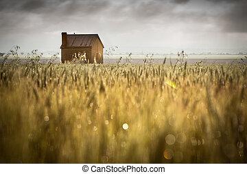 田園, 愛