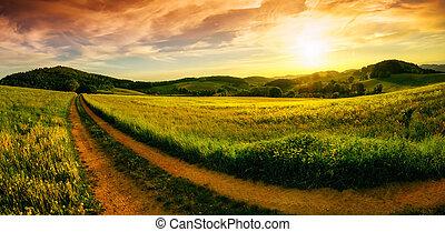 田園, 日没, 風景, パノラマ