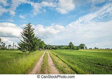田園, farmhouse., ラトビア人, 景色。