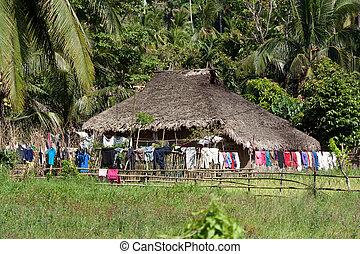 田舎, フィールド, フィリピン, 小屋, donsol, 米, 支部