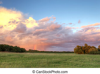 田舎, フィールド, 日没, イギリス