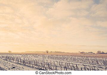田舎, 冬季, 風景