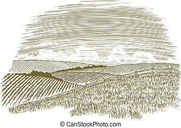 田舎, 木版, フェンス, 横列
