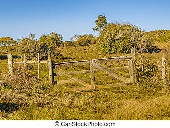 田舎, 現場, maldonado, ウルグアイ