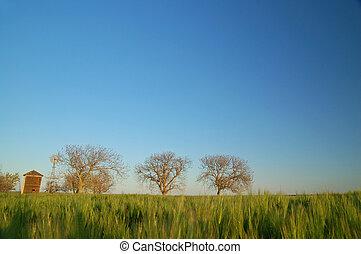 田舎, 田園