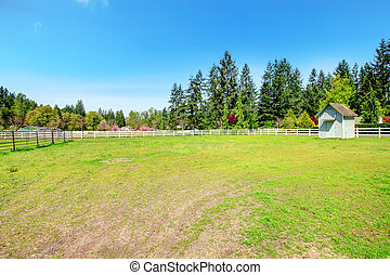 田舎, 農場, 馬