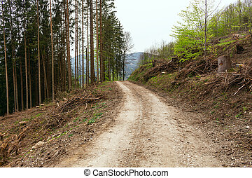 田舎, 道, 泥だらけである, 軌道に沿って進む, タイヤ
