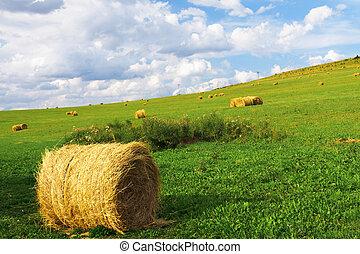 田舎, 金, ベール