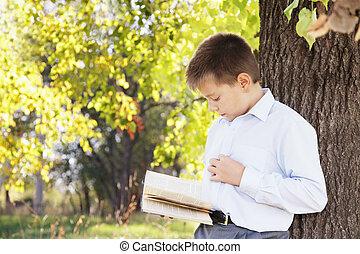 男の子の読書, 公園, 本