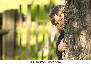 男の子, わずかしか, かわいい, の後ろ, 木。, かいま見ること, 肖像画