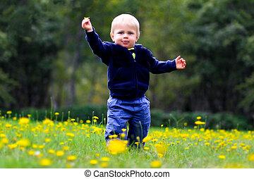 男の子, プレーしなさい, 花, フィールド