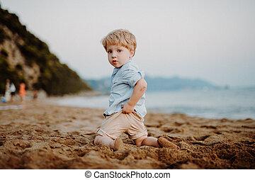 男の子, 夏, playing., 休日, 小さい, よちよち歩きの子, 浜
