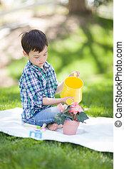 男の子, 彼の, 花, 水まき, 若い, 外, レース, 混ぜられた, potted, 草