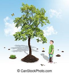 男の子, 成長する, 自然, 木, 中に, 白, 庭