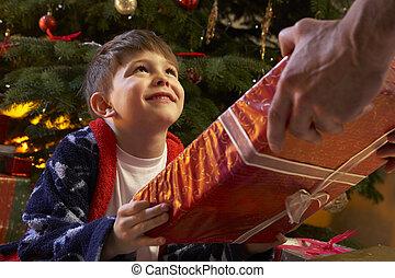 男の子, 木, 若い, 前部, 受け取ること, クリスマスプレゼント