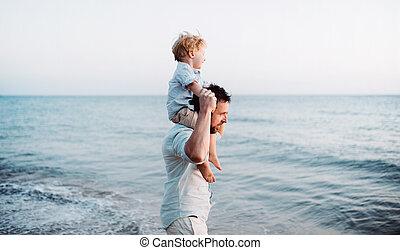 男の子, 歩くこと, よちよち歩きの子, 夏, 父, 休日, fun., 浜, 持つこと