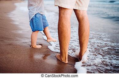 男の子, 歩くこと, 夏, 父, 中央部, holiday., よちよち歩きの子, 浜
